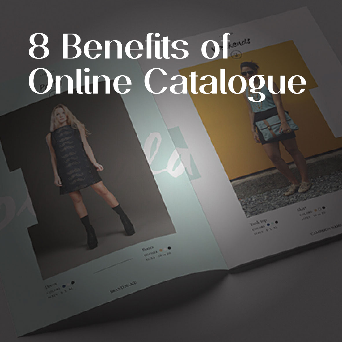 Importance of online catalogue EN